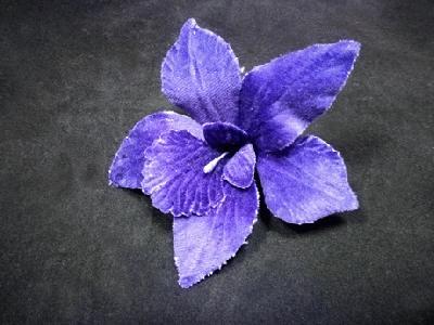 ER 352 Velvet Orchid