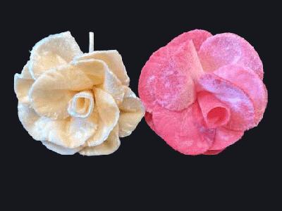 ER 323 Velvet Rose