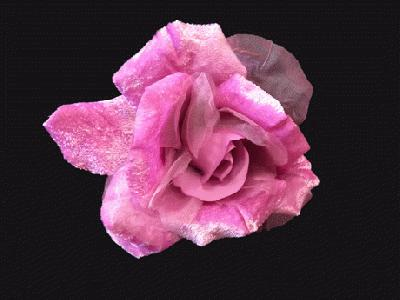 ER 388 Large Silk/Velvet Rose