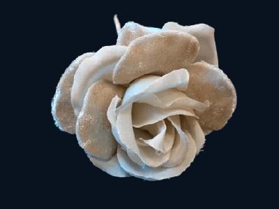 ER 475 Silk/Velvet Rose