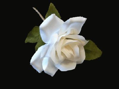 ER 528 Buttonhole Rose