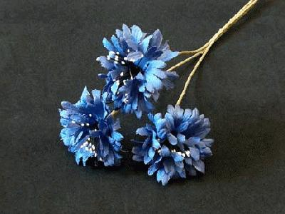 ER 562 Natural Cornflower /3