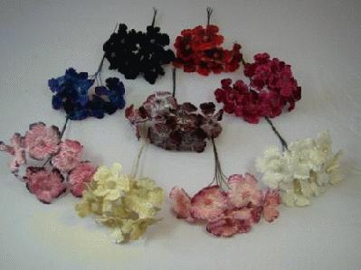 ER583 Velvet Blossom