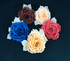 GF 25 Best Silk Rose/Leaves