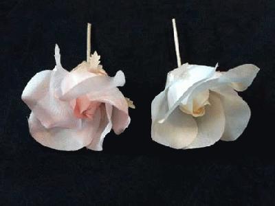 GF 69 Open Silk Bud Rose