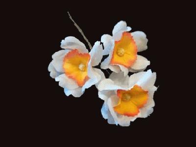 LB 50 Narcissus Spray /3