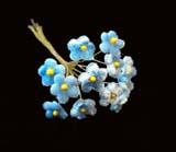 LB 52 Blue Tiny Velvet Forget-Me-Not /12