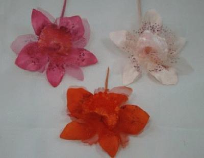 ER306 Orchid