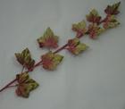 ER560 Graduated Velevt Ivy Leaf