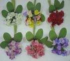 LB11 Silk Primula