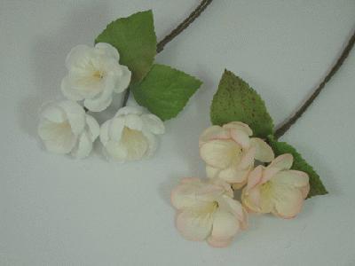 ER564 Apple Blossom
