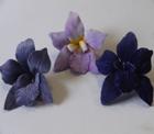 ER352 Velvet Orchid