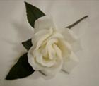ER528 Buttonhole Rose