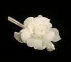 LB38 Cotton Camellia