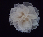 GF63 Large Organza Poppy