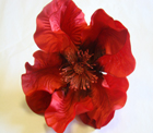 ER457 Giant Silk Poppy